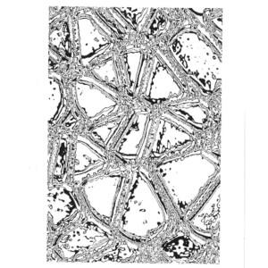 Thermofaxsieb Motiv Franktal-5 für Siebdruck, A4