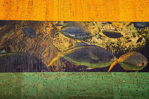 No014 ColorfulCork Fische auf Korkstoff