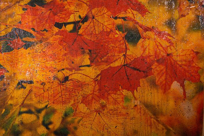 No018-ColorfulCork-by-juttahellbach