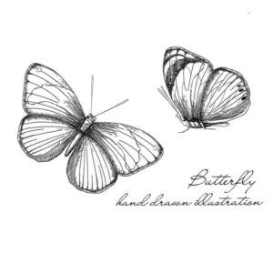 Thermofaxsieb Motiv Schmetterling-1Thermofaxsieb Motiv Schmetterling-1
