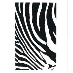 Thermofaxsieb Motiv Zebra-3
