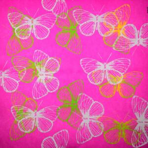 kulörtexx Butterfly 01 print